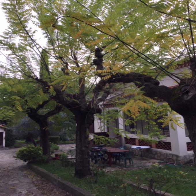 Offres de vente Villa Castelnau-le-Lez (34170)